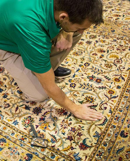 Professional Area and Oriental Rug Cleaning by Klein Chem-Dry